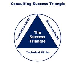 Organization Development techniques for internal consultants